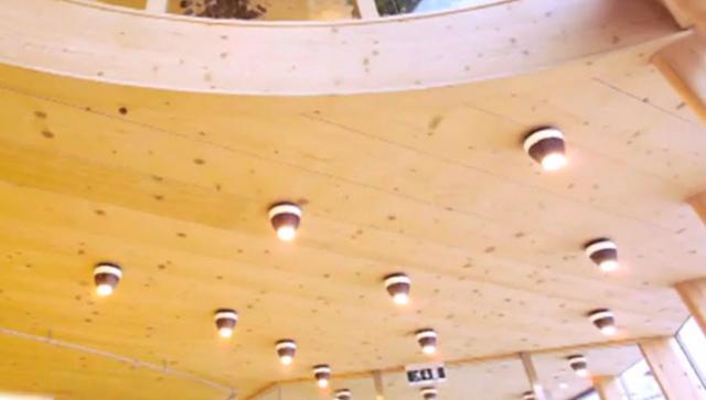 Strutture in legno a Pisa