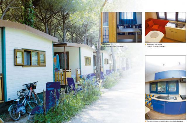 Mario di fina livorno rosignano marittimo case mobili for Angelo case mobili