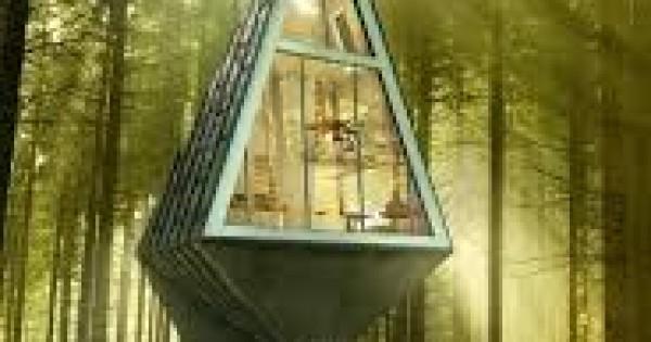 Primeval symbiosis una casa da vivere secondo natura for Casa da vivere
