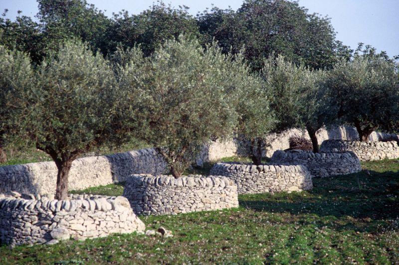 Dalle campagne ai giardini come abbellire le nostre case - Muretti da giardino ...