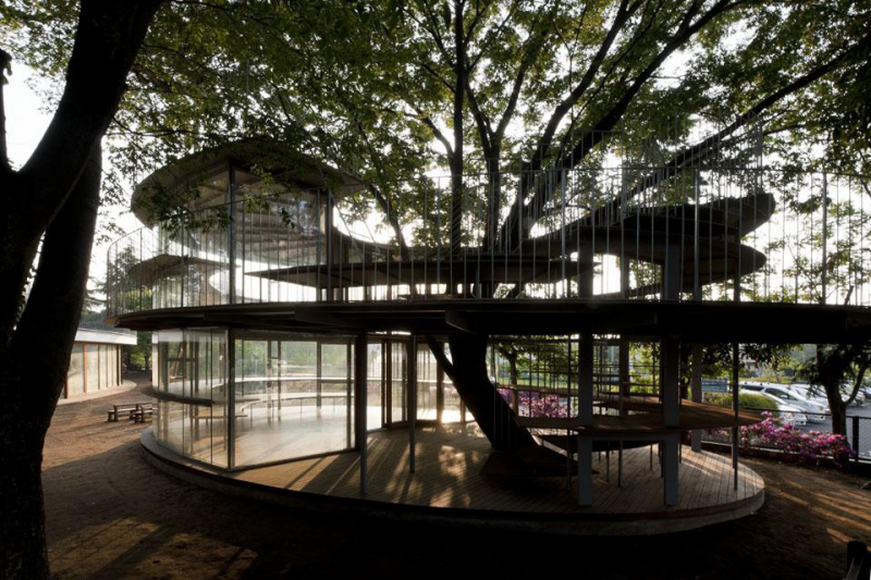 Ring Around a Tree, progettato allo studio di architettura Tezuka Architects