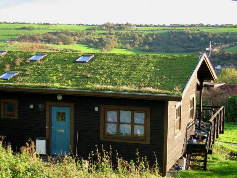Il tetto verde cos 39 costruzione vantaggi funzionalit for Tettoia inclinata del tetto