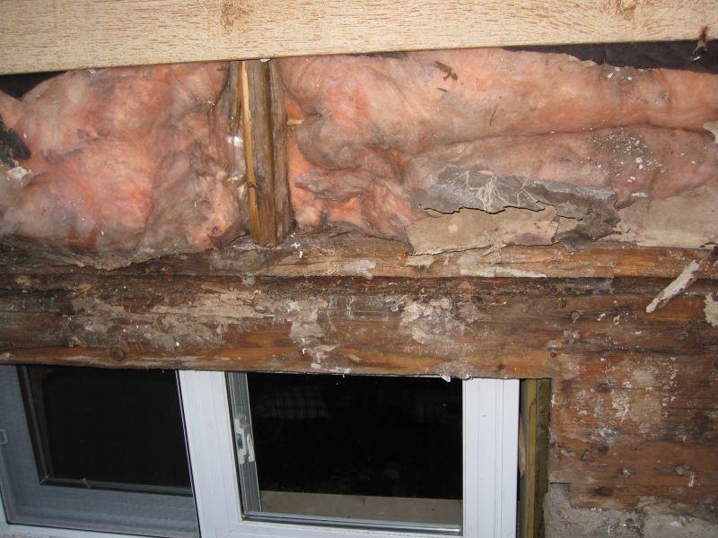 Case in legno come risolvere le problematiche derivanti dall 39 acqua e dall 39 umidit - Come ridurre l umidita in casa ...